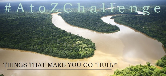 A to Z Challenge - Things That Make You Go Huh